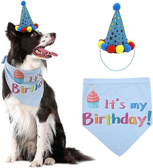 Amazon.com: PUPTECK - bufandas de cumpleaños para perro ...