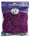SuperMoss (26961) Spanish Moss Preserved, Violet, 4oz
