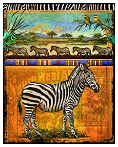 South West Africa Zebra by Chris Vest Art Print Poster or Canvas