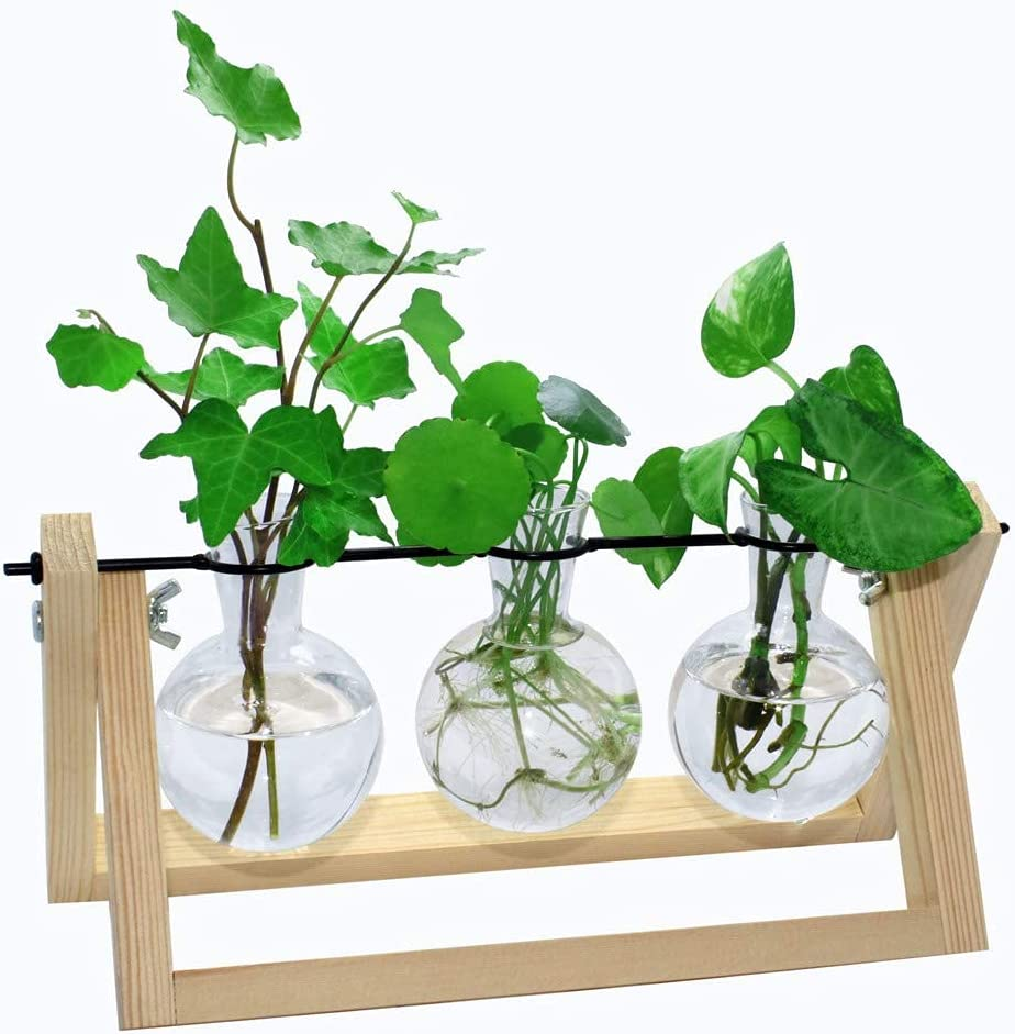 laffeya Plants Propagation Stations, Hydroponic Terrarium Kit- Desktop Glass Flower Planter 3 Glass Vase with Wood Stands for Home Office Decor, Plant Containers (3 Bulb Vase C, Beige)