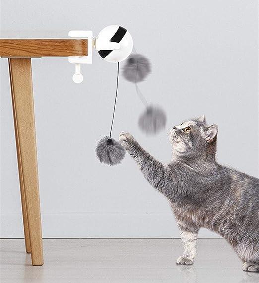 Zeagro - Pelota interactiva para Gatos, Juguete con LED de ...