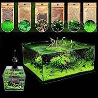 JannahMehr 600Pcs Aquatics Water Grass Plant Seeds Fish Tank Aquarium Landscape Decoration, Easy to Plant, Plant Seeds…