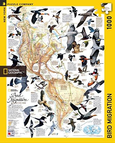New York Puzzle Company - National Geographic Bird Migration - 1000 Piece Jigsaw ()