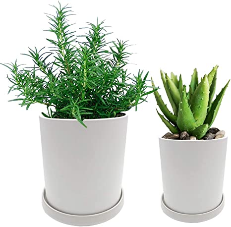 Luhiew Ceramic Indoor Planter 5 7 4 7 Inch Ceramic Plant Pots With Drainage Hole And Saucer 2 Pack Of Flower Planters White Kitchen Dining