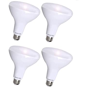 mini Bioluz Dimmable 4 Pack