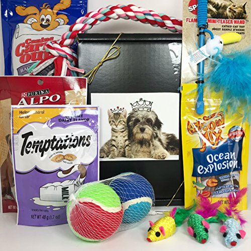 Dog & Cat Gift Box Basket For Favorite Canines & Felines (Kitty, Kitten, Fur Baby) - Prime - Send These Treats and Toys to Your Furry Pet Friends!