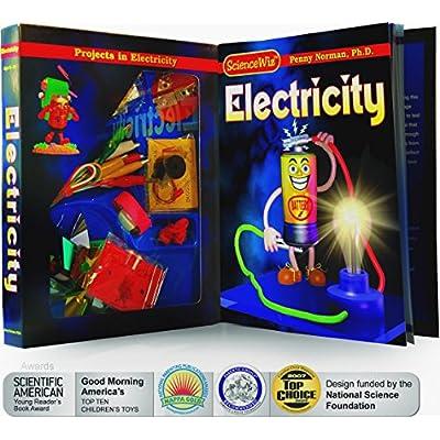 ScienceWiz / Electricity Kit: Norman, Penny, Ph.D., Huff, Art, Beckstrom, Lynn: Toys & Games