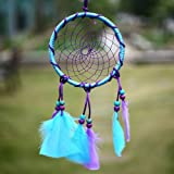 Circle-shaped Dream Catcher with Feathers Wall Hanging Decoration Ornament for Wall Hanging
