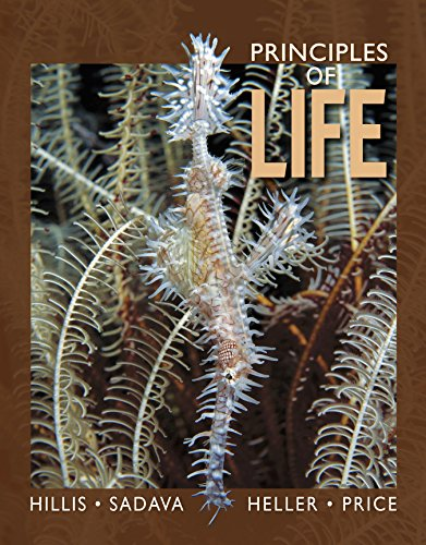 Principles of Life (High School Edition) (Life The Science Of Biology 9th Edition Ebook)
