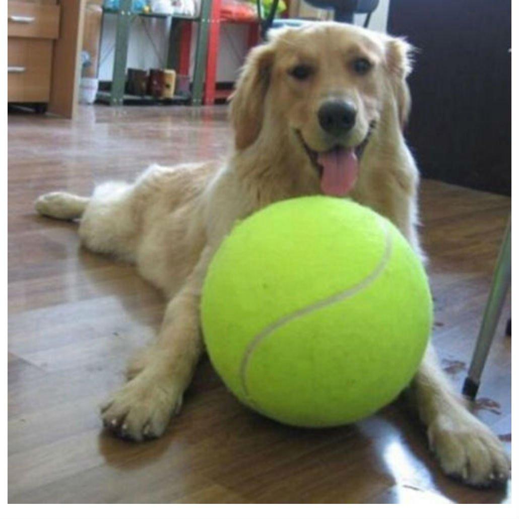 Hot 9.5'' Big Giant Pet Dog Puppy Tennis Ball Thrower Chucker Launcher Play Toy