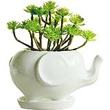 GeLive Elephant White Ceramic Succulent Planter Flower Plant Pot Window Box with Saucer Animal Decor