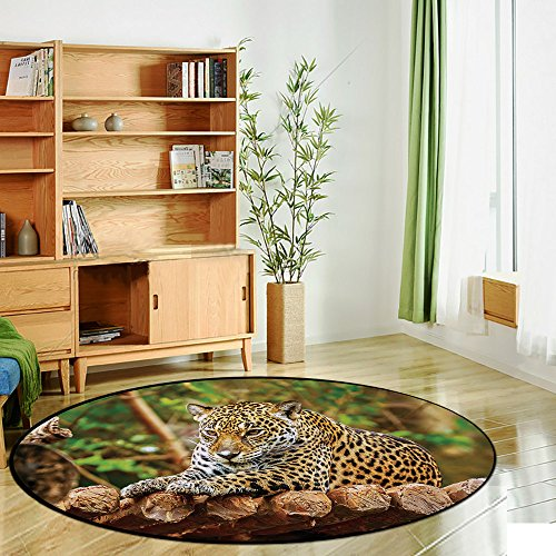 Printing Round Rug,Zoo,Jaguar on Wood Floor Wildlife Animals Feline Big Cat Mammal Predator Resting Mat Non-Slip Soft Entrance Mat Door Floor Rug Area Rug For Chair Living Room,Green Yellow Brown by iPrint (Image #2)