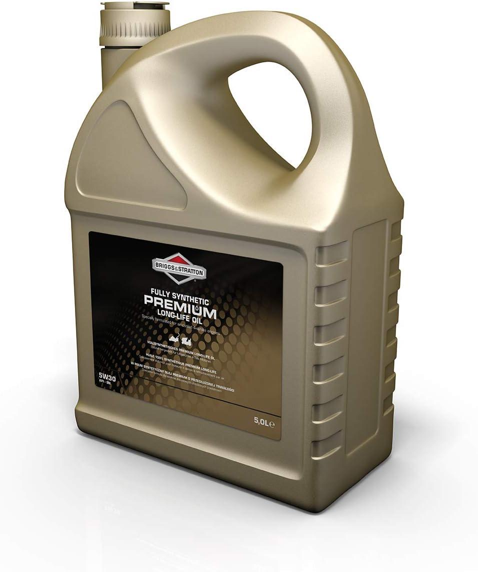 Briggs Stratton 100009s Premium Öl Schwarz 5 0 Litre Baumarkt