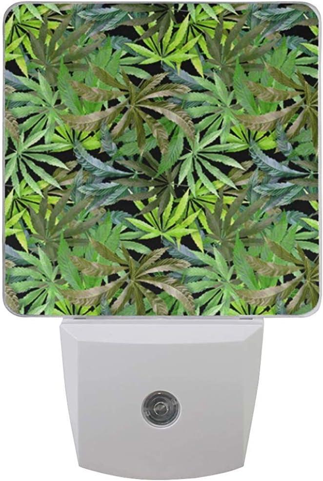 Luz de noche marihuana deja lámpara de hierba marrón con sensor de oscuridad hasta el amanecer para dormitorio pasillo