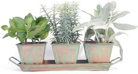 Amazon Com Culinary Herb Garden Set Copper Patina 5 Herb