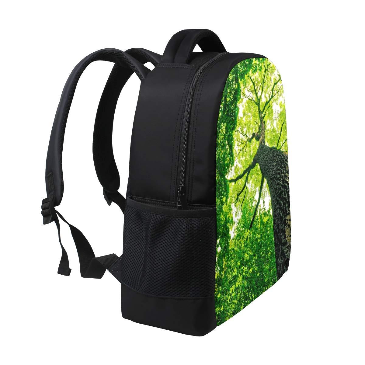Amazon.com  TropicalLife Landscape Nature Scenery Tree Backpacks School  Bookbag Shoulder Zipper Backpack Hiking Travel Daypack Casual Bags   TropicalLife 4188ad1093