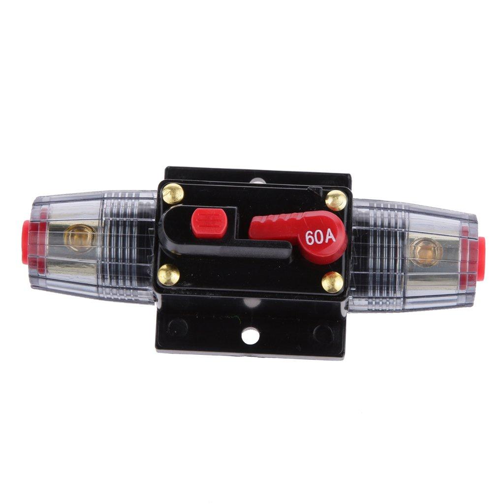 H HILABEE Disyuntor Interruptor Cortacircuitos para Circuito de Est/ére-o de Autom/óvil//Portafusibles para Coche 12V 250A 24V