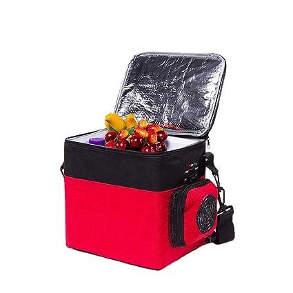 Amazon.es: QIHANGCHEPIN Bolso portátil del congelador del Viaje de ...