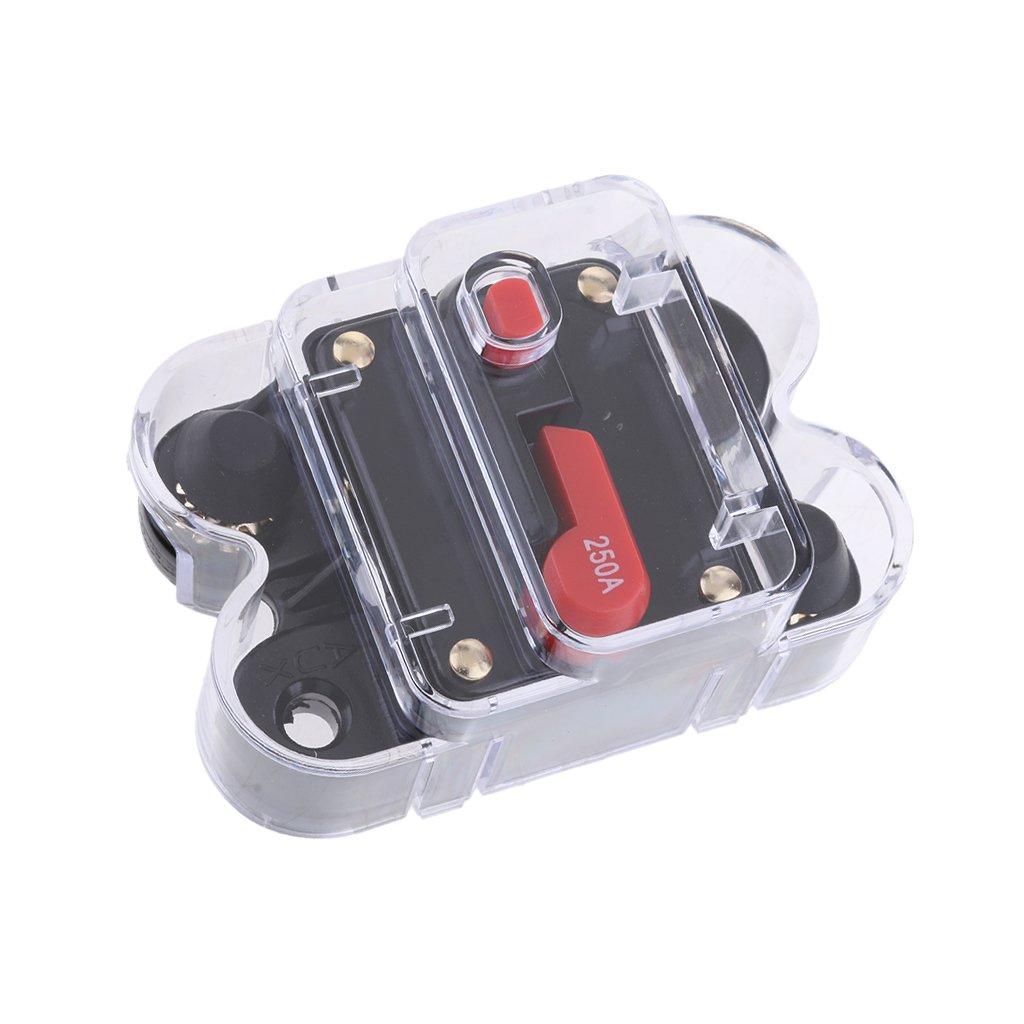 Homyl Interruttore Automatico Del Fusibile 150A Accessori Di Ricambio Per Auto