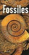 Fossiles par Losange