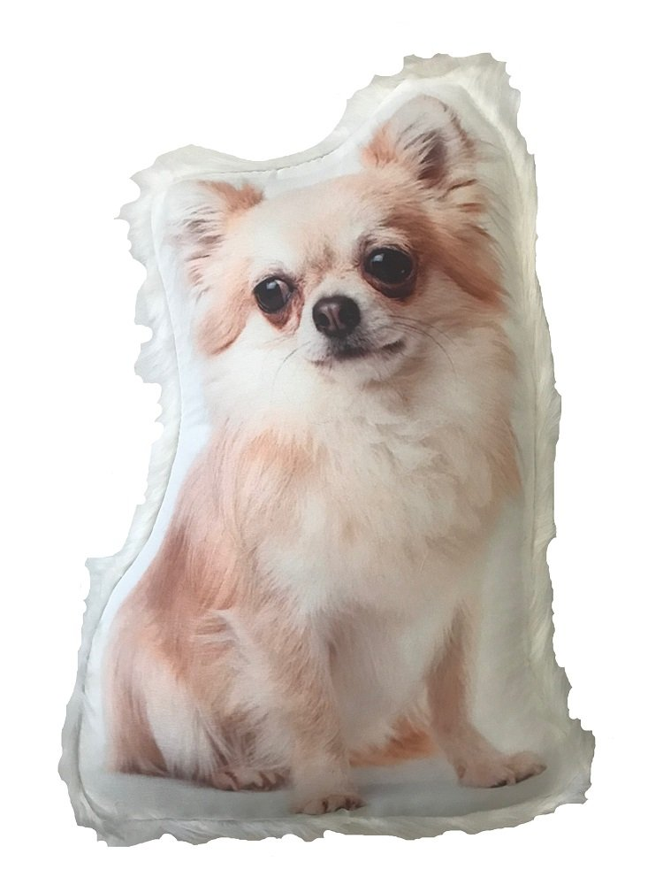 Dog Themed Decorative Accent Pillow with Fur Trim, Chihuahua, Approx 14 x 8. Approx 14 x 8. KK001