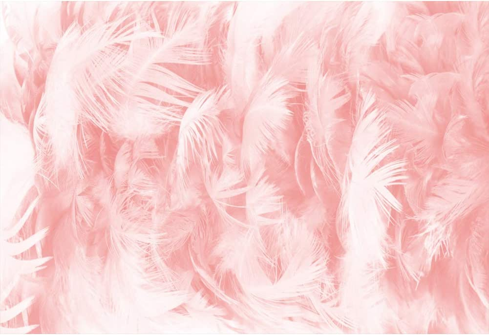 Zhy 7x5ft Colorful Feather Backdrop Pure White Simple Style Fashion Portrait Photography Backdrop Baby Children Photoshooting Polyester Background Studio Props 137