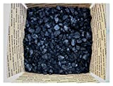 BITUMINOUS BLACKSMITH COAL METALLURGICAL COKING COAL 1/2 CUBIC FT ABOUT 25 LBs. US Seller