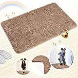#10: Indoor Doormat Super Absorbs Mud Absorbent Rubber Backing Non Slip Door Mat for Front Door Inside Floor Dirt Trapper Mats Cotton Entrance Rug, 20