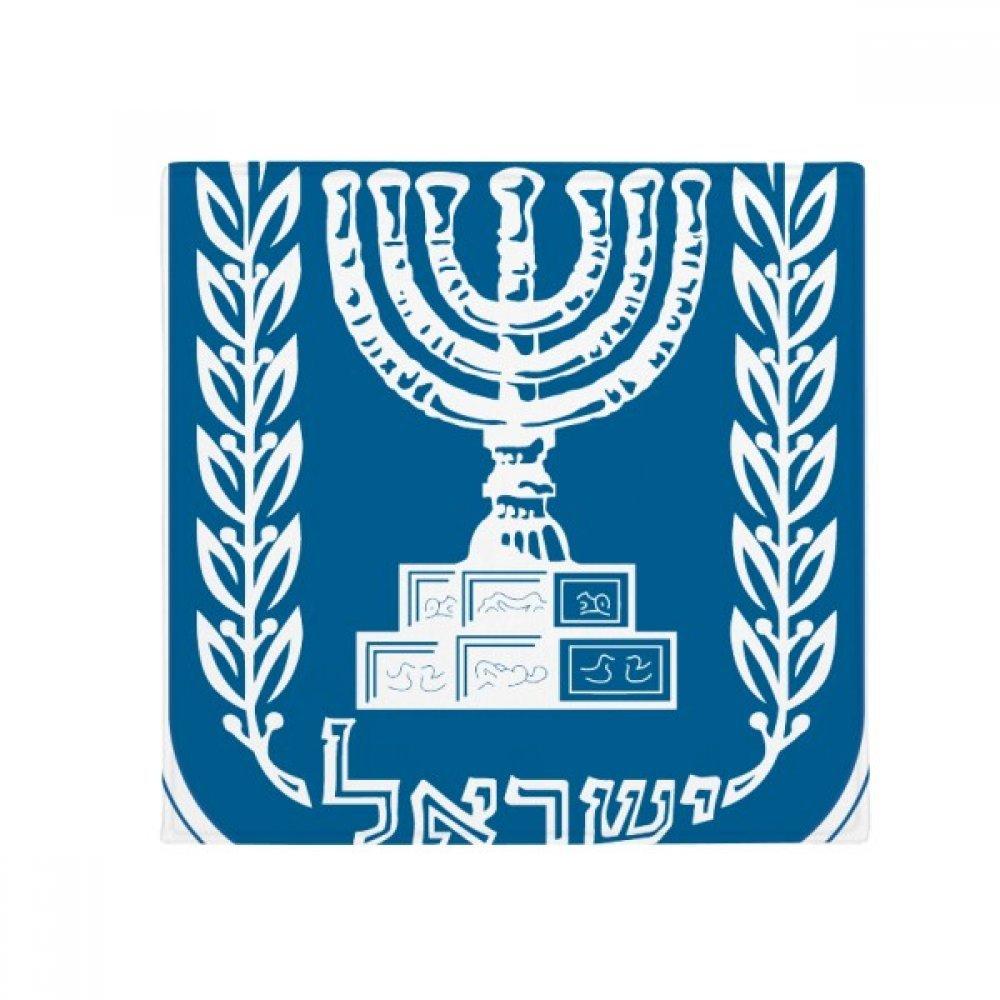 DIYthinker Israel National Emblem Country Anti-Slip Floor Pet Mat Square Home Kitchen Door 80Cm Gift
