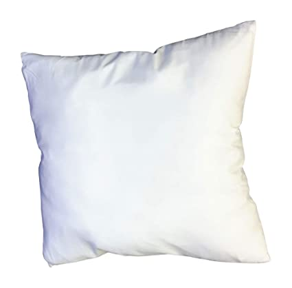 Amazon Euro 40 X 40 Pillow Insert Home Kitchen Awesome 30 Inch Euro Pillow Inserts
