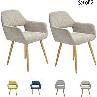 FurnitureR Set de 2 Silla de Comedor y Silla de salón con reposabrazos de diseño Europeo