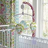Carousel Designs Kumari Garden Mobile