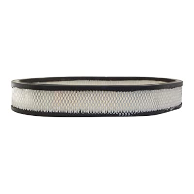 ACDelco A862C Professional Air Filter: Automotive