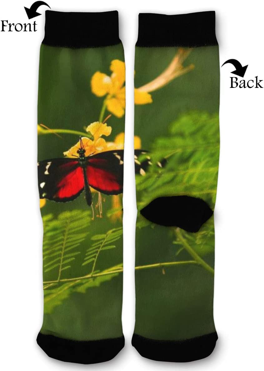 BLongTai Knee High Compression Socks Red and Black Butterfly for Women and Men Sport Crew Tube Socks