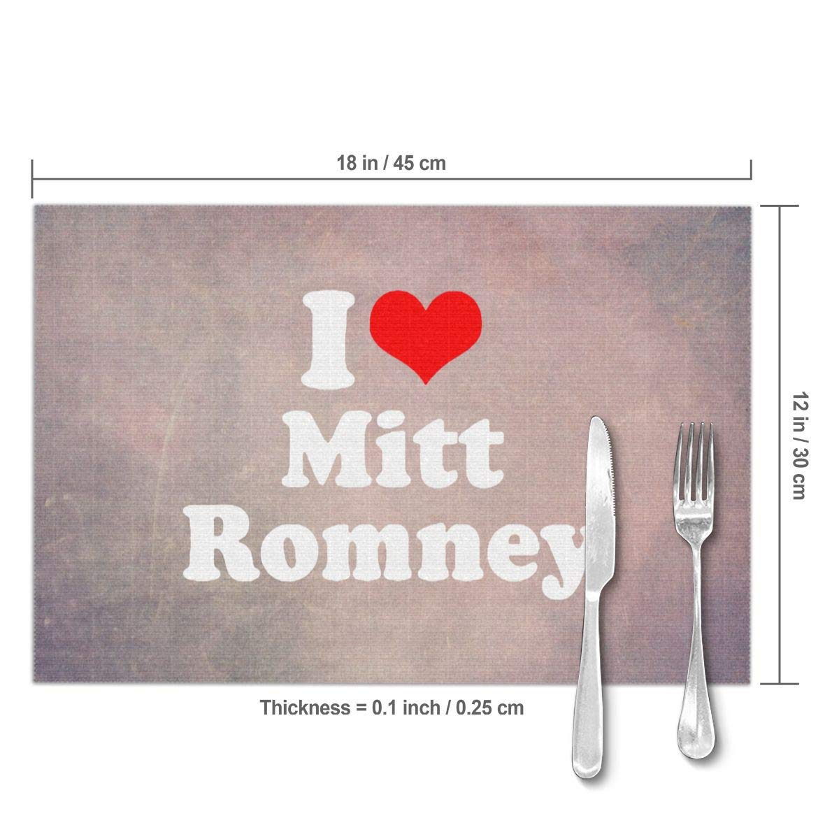 I Love Mitt Romney Travel Tags For Suitcase Bag Accessories 2 Pack Luggage Tags