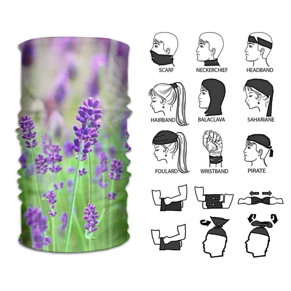 Trsdshorts Headband Purple Flowers and Landscape Background Wall Outdoor Multifunctional Headwear 16 Ways To Wear Your Magic Headwear Scarf