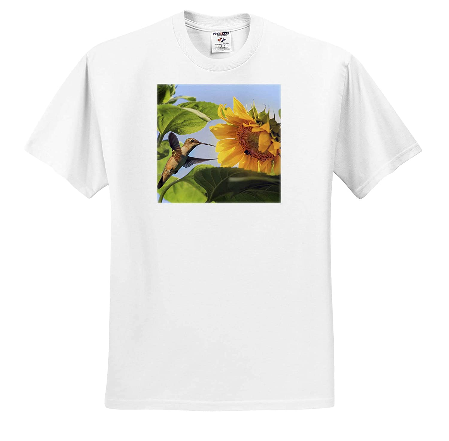 - T-Shirts A Ruby-Throated Hummingbird and Carpenter bee Enjoying a Sunflower 3dRose Stamp City Nature