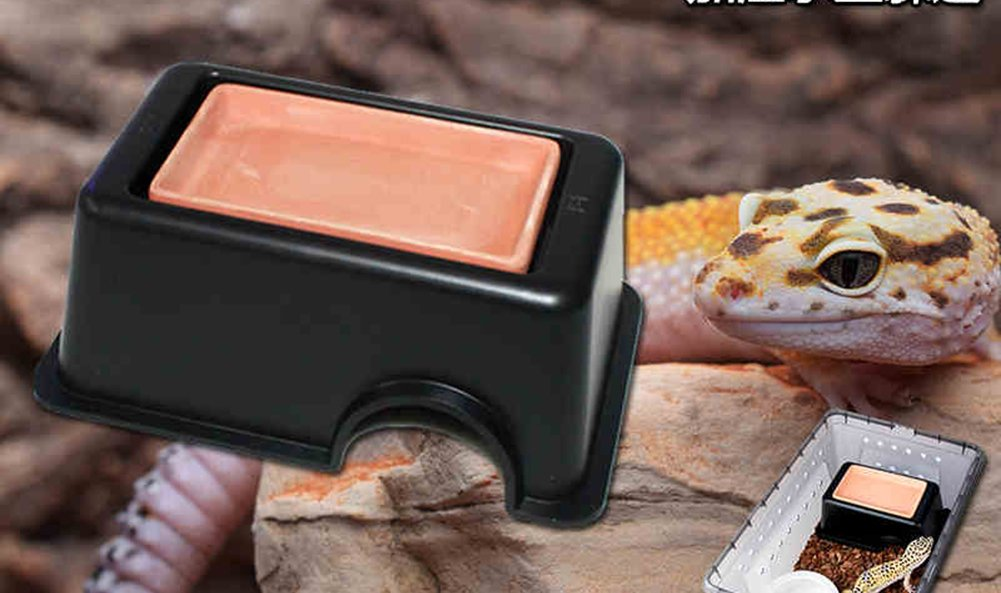 Frjjthchy Reptile Hide Cave Box Lizards Hideout Caves Hideaway for Small Animal Black by Frjjthchy (Image #2)