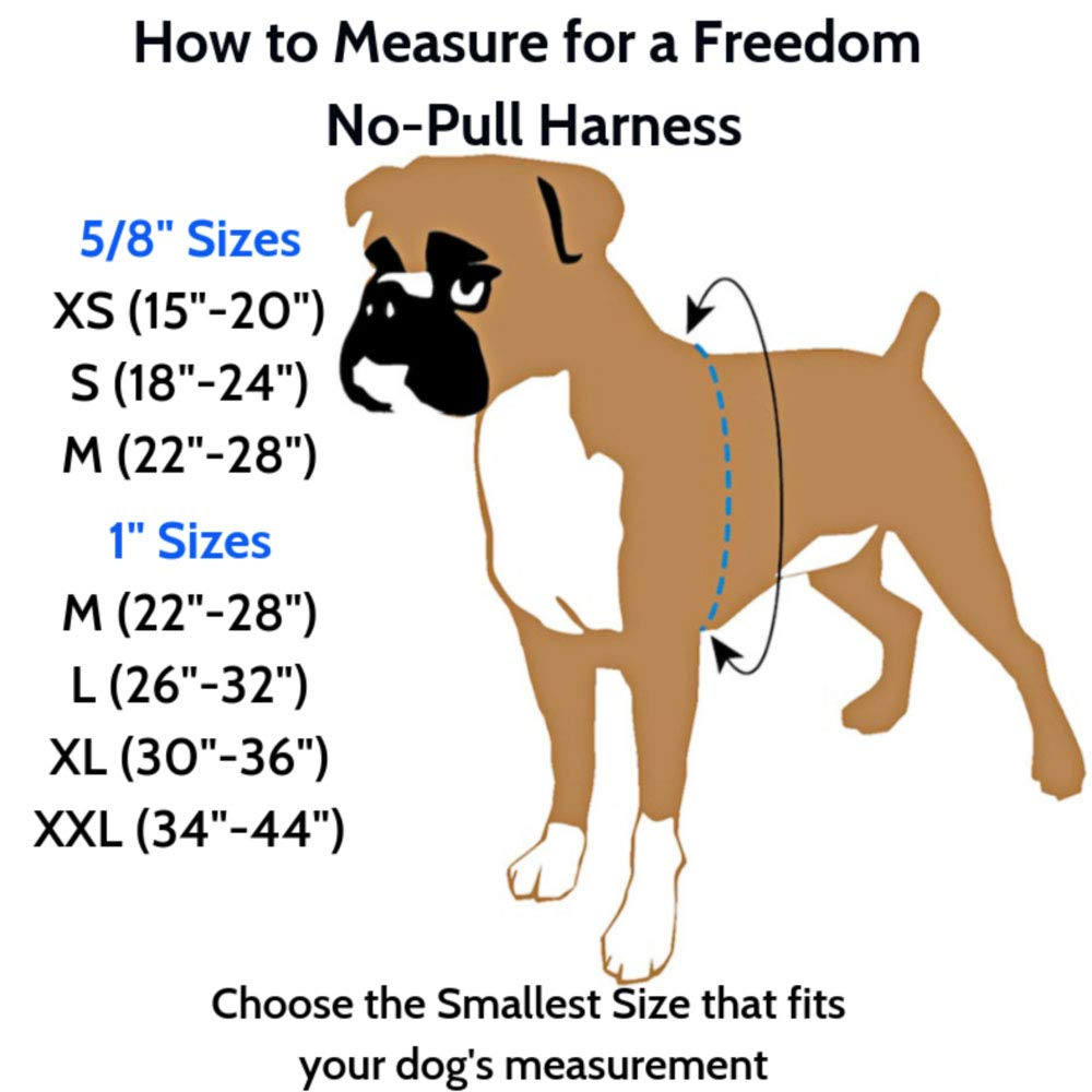 2 Hounds Design Freedom No-Pull Dog Harness Training Package, Medium (1'' Wide), Raspberry by 2 Hounds Design