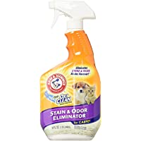 2-Pack Arm & Hammer Pet Stain and Odor Eliminator 32oz