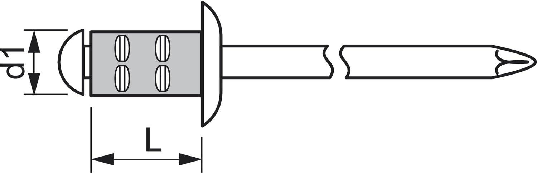 250 St/ück,1433899 Alu mit Edelstahldorn,4.8 x 17//16 mm GESIPA Poly Grip Mehrbereichsniet Grossflachkopf