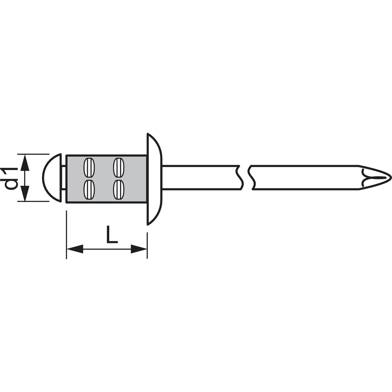 250 St/ück,1433897 Alu mit Edelstahldorn,4.8 x 10//16 mm GESIPA Poly Grip Mehrbereichsniet Grossflachkopf
