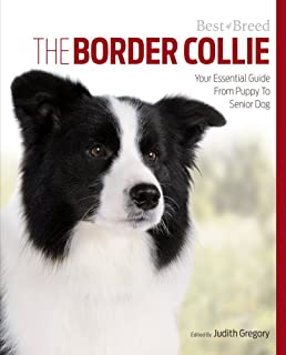 border collies complete pet owner s manual michael devine rh amazon com border collie owners guide uk border collie owners guide book