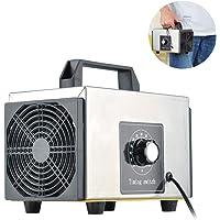 Lychee Generador de ozono Comercial Profesional,10,000mg/h 220V Purificador