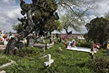 24 x 36 Giclee Print of Garcia Cemetery a Small Country Cemetery Near The Little Settlement of Los Indios in Eastern Cameron County Near The Rio Grande River Border with Mexico r08 41712 by Highs