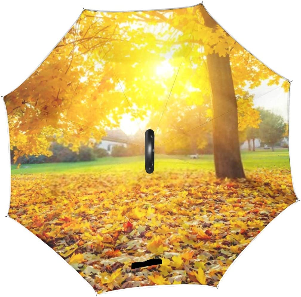 Double Layer Inverted Inverted Umbrella Is Light And Sturdy Colorful Foliage Autumn Park Reverse Umbrella And Windproof Umbrella Edge Night Reflectio
