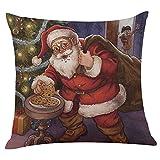 Christmas Pillow Case, ZOMUSA