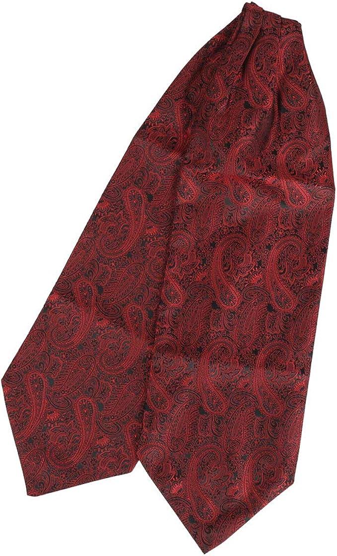 RAVENHILL Men/'s Self-tied Cravat Ascot 2-Pack Combo