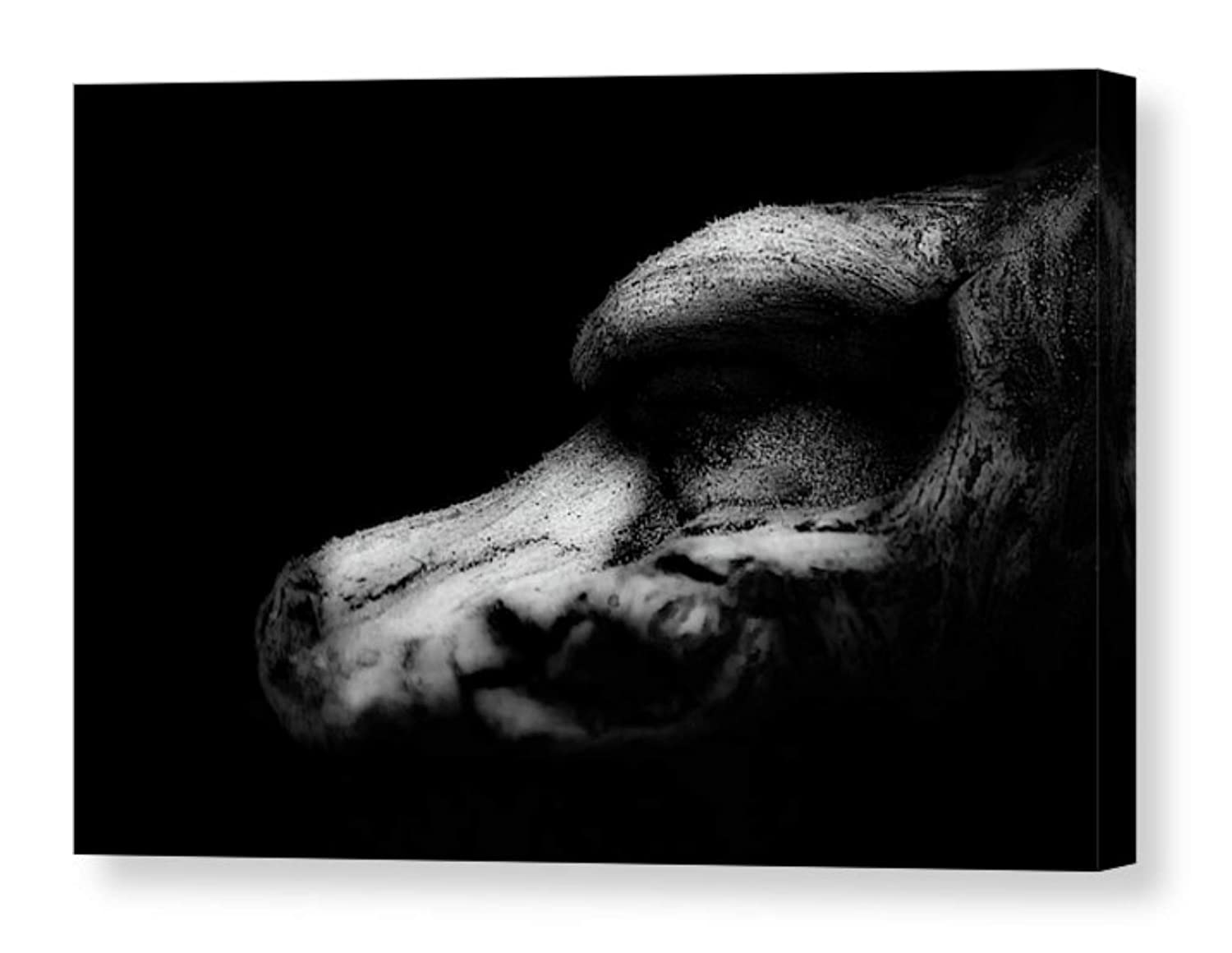 Amazon Com Contemporary Photographic Print On Canvas Minimalist Black And White Abstract Photography Nature Photo Dark Wall Art Modern Home Decor Ready To Hang 8x12 12x18 16x24 20x30 Handmade