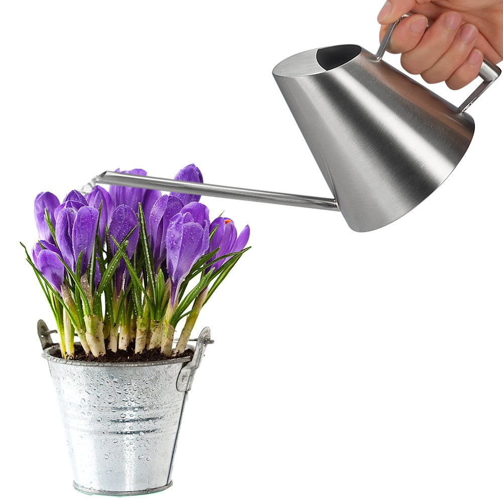 Fasmov 13.5 oz Stainless Steel Watering Can Modern Style Watering Pot